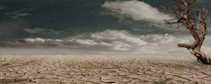 صحرا کا مسافر ۔۔۔ عباس حیدر