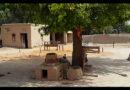 پیڑ سے بچھڑی شاخ، افسانہ ۔۔۔ زہرا علی