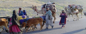 افغان کوچیوں کی آبادی، حقائق کیا ہیں؟ ۔۔۔ اسحاق محمدی