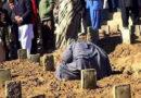 قبروں کی صرف ایک اور قطار ۔۔۔ فاطمہ عاطف